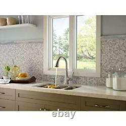 Pfister Pasadena Pull-Down Sprayer Kitchen Faucet in Stainless Steel